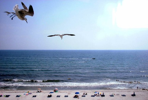 panama city beach view from flamingo motel 3 jared. Black Bedroom Furniture Sets. Home Design Ideas