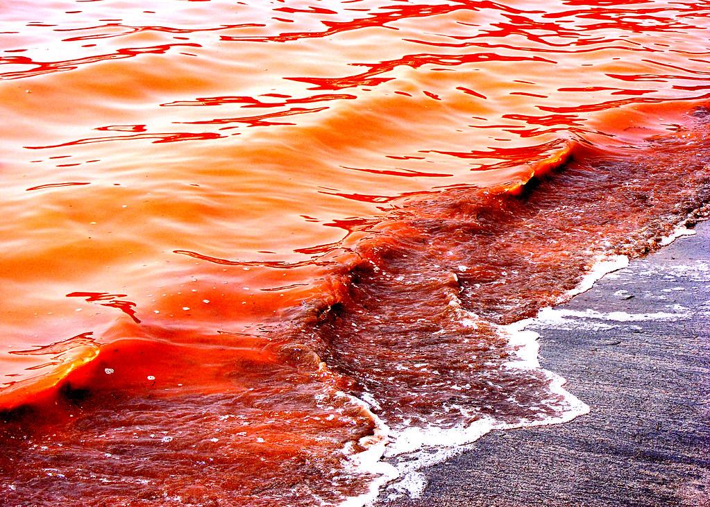 Ocean Tide  Broadway Riviera Beach Fl