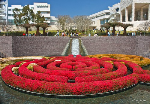A-mazing gardens at The Getty | by Nancy Rose