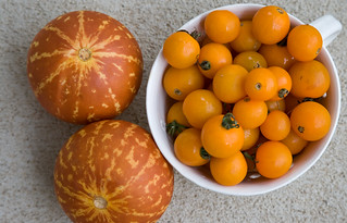Orange from the Farmer's Market | by Mama Urchin