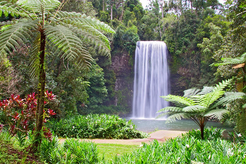 Millaa Millaa Falls | by wildphotos4u