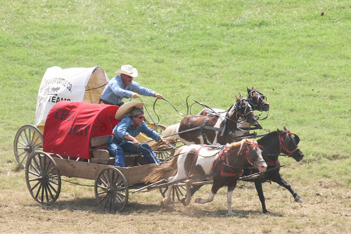 Chuckwagon Race | by thewhitekat