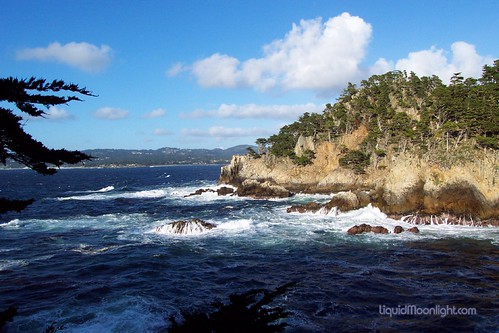 Point Lobos - Carmel California Beach | by Darvin Atkeson