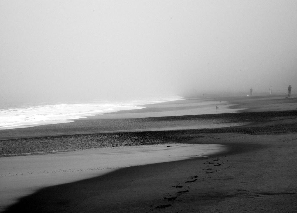 205  Baker Beach in fog | The Year of Fog project  www dairi