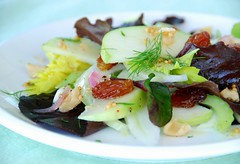 apple, fennel, and celery salad | by Food Blogga