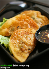 fried-dumpling | by vkeong