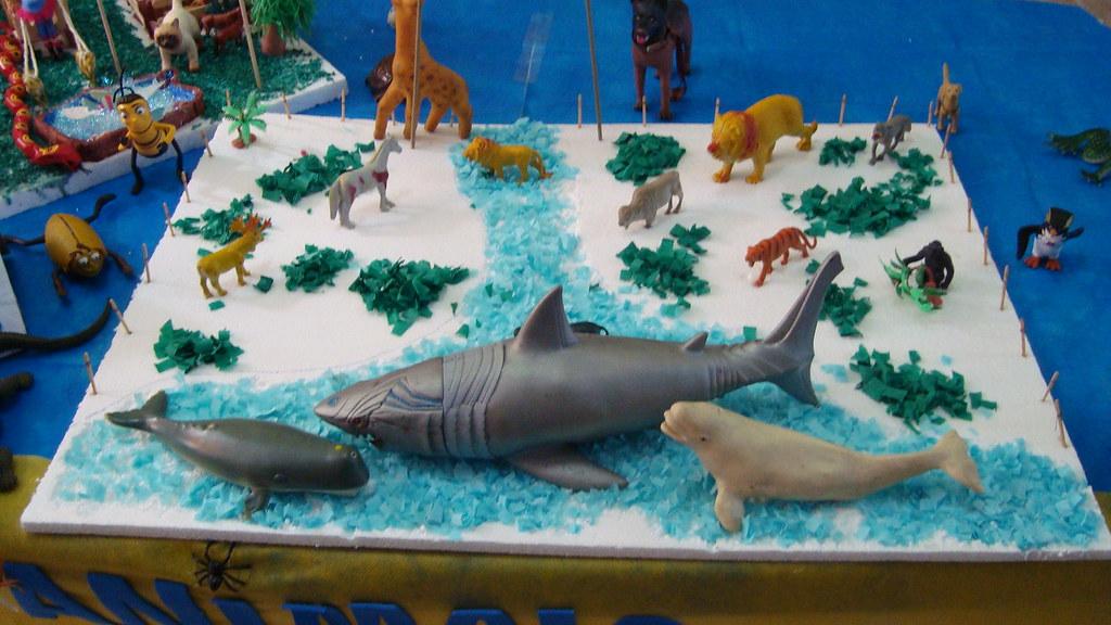 Populares feira de ciências - mamíferos | Ângela Mello | Flickr SL92