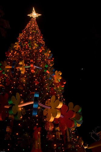 Honolulu Hale Christmas Tree | by tiger_tim_2000