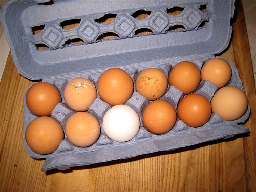 Fresh Eggs - My neighbors' chickens are very productive, so … - Flickr