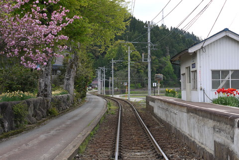 えちぜん鉄道比島駅周辺で…… | E...