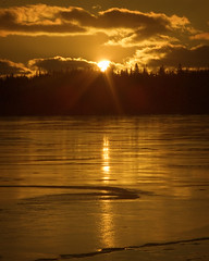 On Golden Pond | by Clyde Barrett