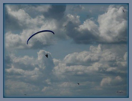 The paraglider | by ruschi_e