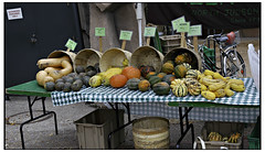 Squash - Green City Farmers Market | by swanksalot
