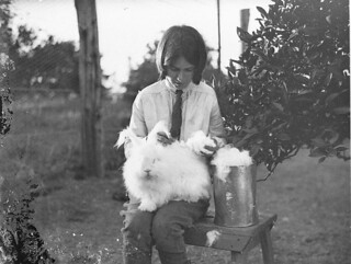 Girl with a white angora rabbit, 1930s / by Sam Hood | by State Library of New South Wales collection