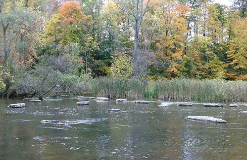 18 mile creek olcott ny october 18 salmon fishing on for Salmon river ny fishing map