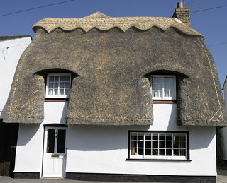 THE PERFECT THATCH | by Adam Swaine