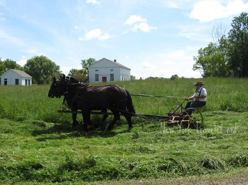 Farming Mowing Meadow | by mrsmecomber