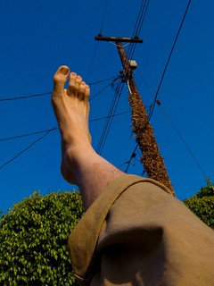 Reach for the Sky... But Don't Get Tangled in the Wires | by lefeber