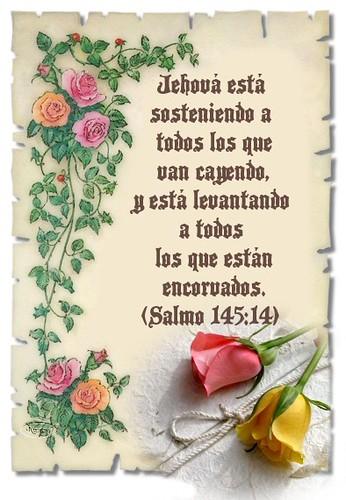 Re: BUSCO PAREJA TESTIGO DE JEHOVA