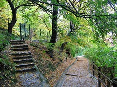 Diverging paths on Castle Hill, Ljubljana, Slovenia | by Paul McClure DC