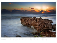 BLOWING ROCKS PRESERVE, FLORIDA | by carlosm76