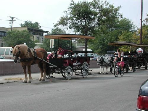 Tours Of Charleston Sc Carriage