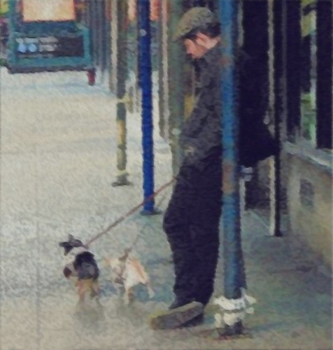 Man with two dogs | by stpenn