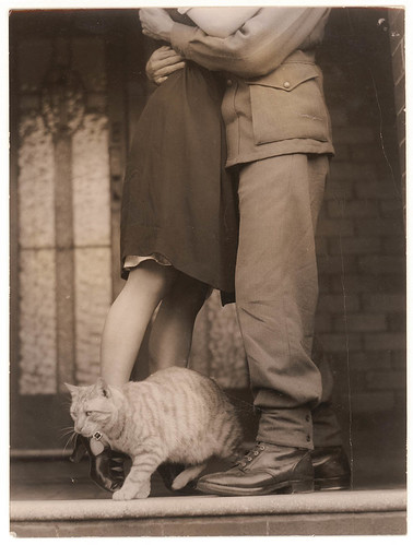 Soldier's goodbye & Bobbie the cat, ca. 1939-ca. 1945 / by Sam Hood | by State Library of New South Wales collection