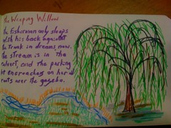 Weeping Willow poem | by anselm23
