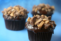 Peanut Butter Cup Cakes | by Bakerella