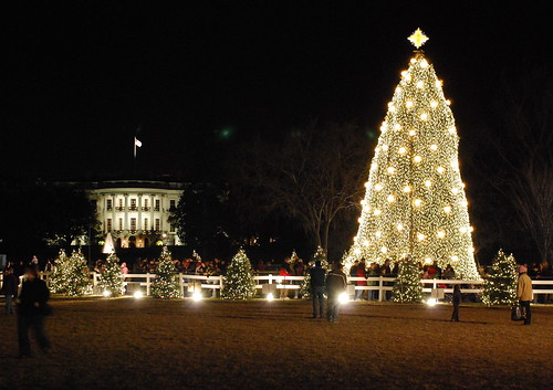 White House Christmas tree | by afagen