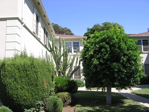 English Gardens Apartments Roanoke Va
