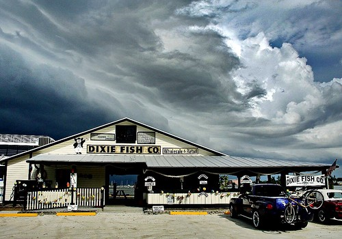 Dixie fish co storm clouds over dixie fish co for Dixie fish company