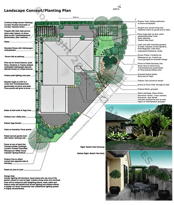 Landscape design and planting concept plans nz landscapin for Landscaping jobs auckland