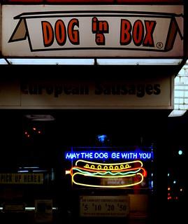 Image Result For Homer Dog
