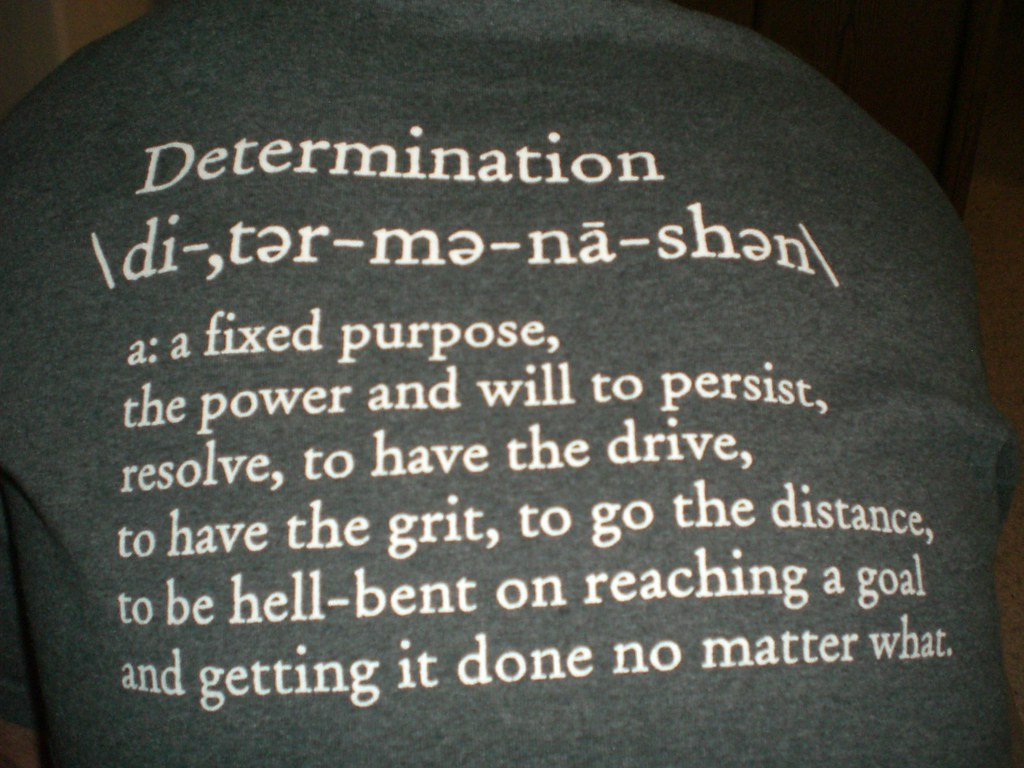 Image result for Image for determination