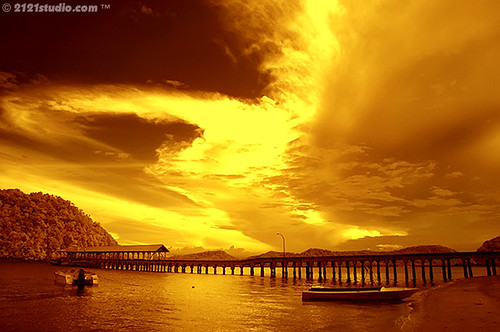 Golden Dream @ Penyabung (Infrared) | by 2121studio