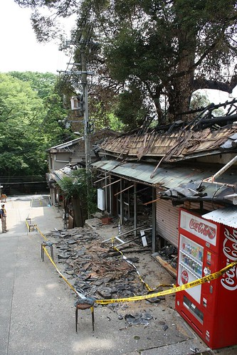 fire aftermath, nara park | by Doctor Memory
