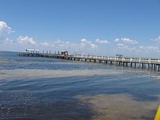 Ted visit 068 fishing pier pine island sound at for Bokeelia fishing pier