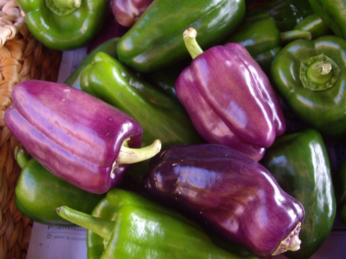 Green and Lilac Peppers | by swampkitty