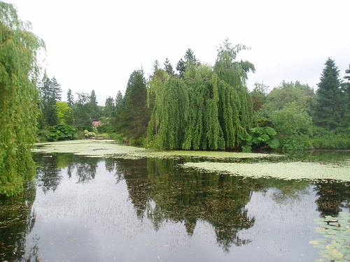 Pond View | by RHR Horticulture