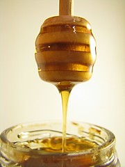 Honey dipper | by Hillary Stein