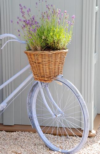 On Yer Bike Ducati Aylesbury