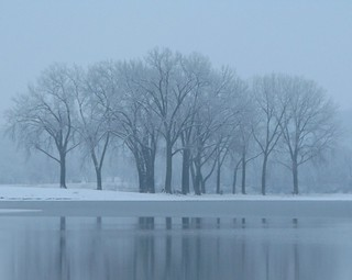 Gray's Lake Grove - Flying Snow | by Don3rdSE