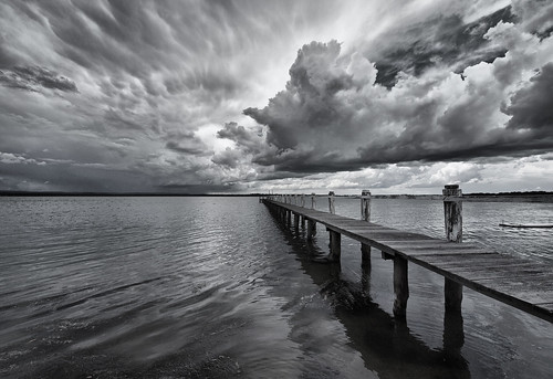 Drama in black and white | by maureen_g