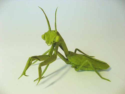 Praying Mantis (female) | by MABONA ORIGAMI