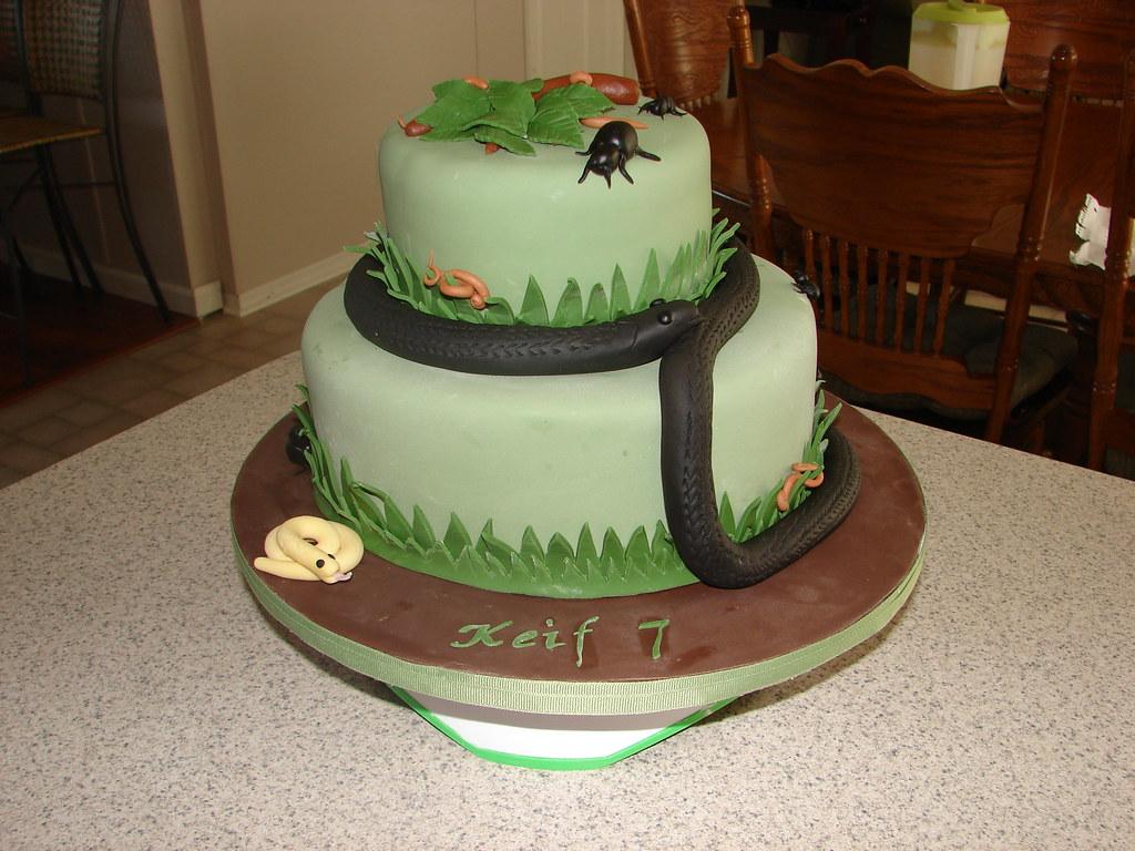Snake Birthday Cake Clarissa Lopez Flickr