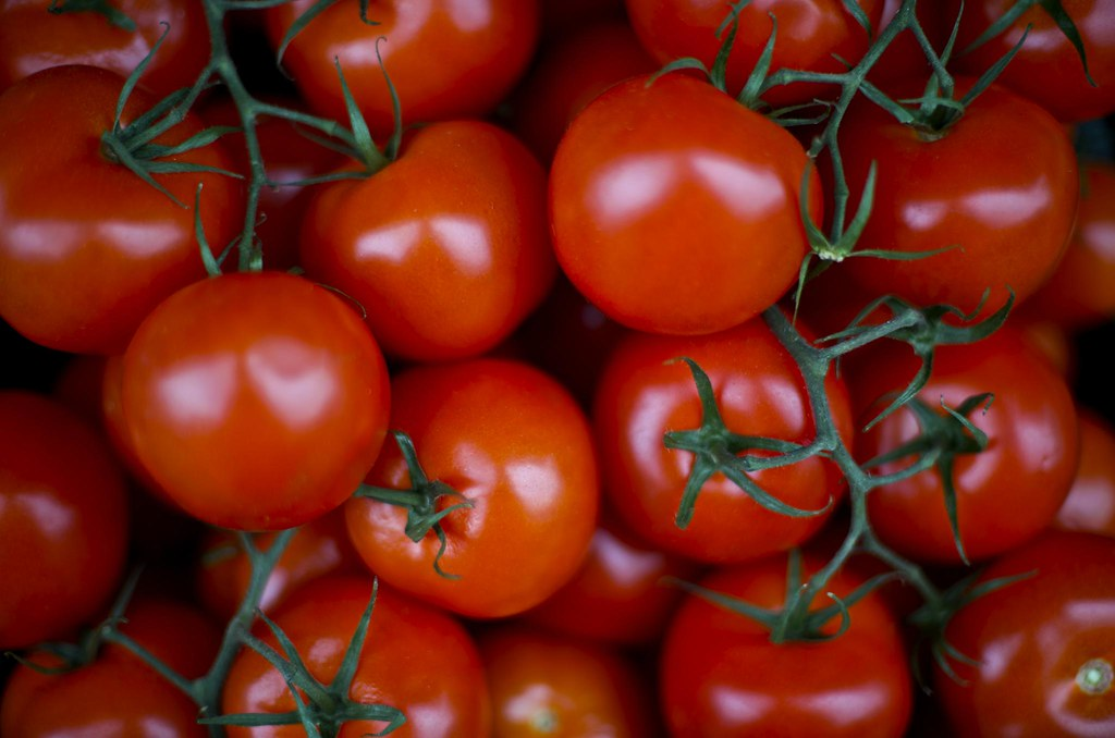 Image result for vine tomatoes