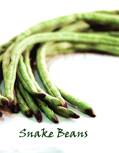 Snake Bean | by anhsphoto_busy!!