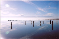 salton sea | by teenangst